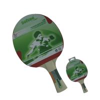 Palas de Tenis Mesa